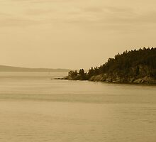 open water by madgabi
