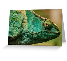 karma chameleon? Greeting Card