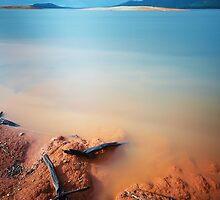Flotsam by David Haviland