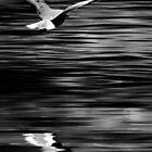 Take flight II by Angela King-Jones