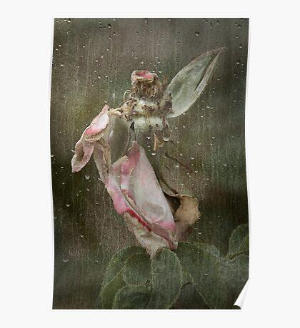 Rust 'n Roses ~ No 19 Poster