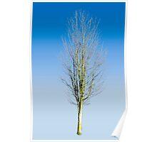 Justa Tree Poster