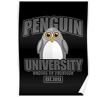 Penguin University - Grey 2 Poster
