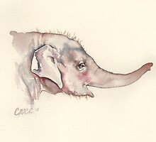 Mali of Melbourne Zoo, Portrait of a Young Elephant by CroceDesigns