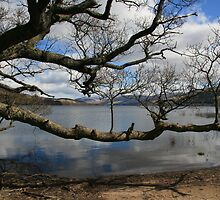 Loch Tay on a Spring Morning by Paul Bettison