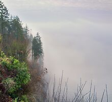 Foggy Cliff by James Zickmantel