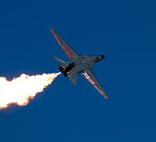 F-111 Final Farewell by Sharon Bree