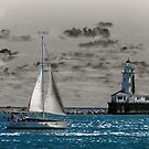 Sailing Away by Brian Gaynor