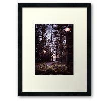 The Walking Path Framed Print