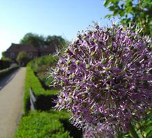 The Gardens - Leeds Castle by BlackhawkRogue
