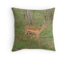 Impala & calf in Kruger Park Throw Pillow