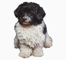 Cute Black And White Havanese Dog Painting Kids Clothes