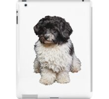 Cute Black And White Havanese Dog Painting iPad Case/Skin