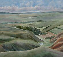 The Corrugated Plain by JennyArmitage