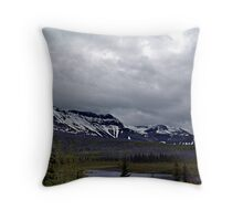 Rebirth (2) Throw Pillow