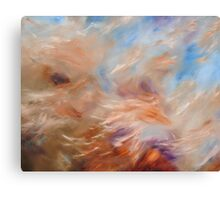 Brush Strokes no.1 Canvas Print