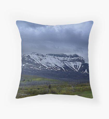 Rebirth (3) Throw Pillow