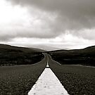 The Road by Richard Pitman