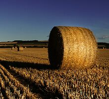 Round bale panoramic by John Ellis
