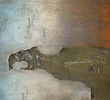 Condor by Gisele Bedard