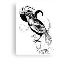 This is not a Raven... Canvas Print