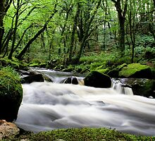 Golitha Falls by Speedster502