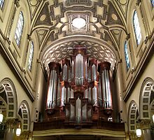 The Mander Organ at St. Ignatius Loyola Church, New York City by Patricia127