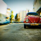 red Beetle by waitin&#x27; for rain