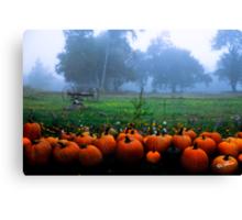 Pumpkin farm Canvas Print