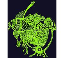 The Green Fish Photographic Print