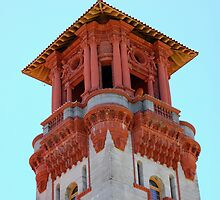 Flagler College  by krissy1028