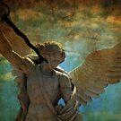 Angel of the last days by Susanne Van Hulst