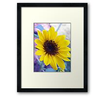 He Loves Me, He Loves Me Not..... Framed Print