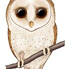 Big-Eyed Barn Owl by SigneNordin