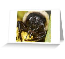 Bumble Greeting Card