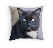 My name is Mr Tibbs Throw Pillow