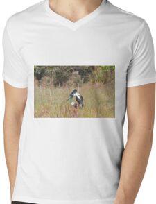 Jabiru Love Mens V-Neck T-Shirt