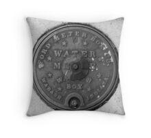 Wabash Throw Pillow