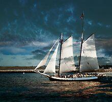 Sail with us by LudaNayvelt
