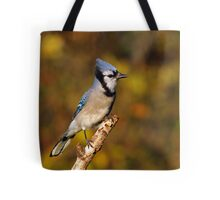 Classic Pose - Blue Jay Tote Bag