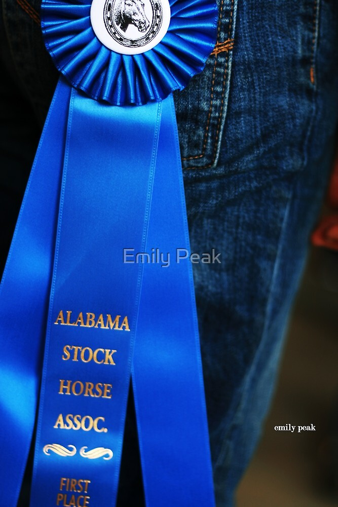 Winner by Emily Peak