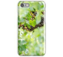 Light Vines iPhone Case/Skin