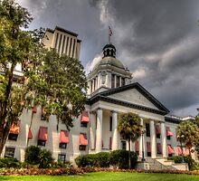 Florida State Capitol by Alexandru Barabas