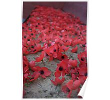 Remembrance poppies Poster