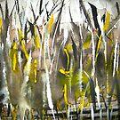 down below talking mountains lies yellow spirit wood by banrai