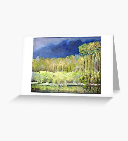 Spring Reflections of Everglades Greeting Card