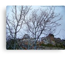 A Different View of Mt. Rushmore Canvas Print