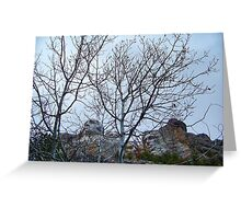 A Different View of Mt. Rushmore Greeting Card