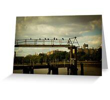 Birds on railings Greeting Card