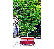 In the Park Photographic Print